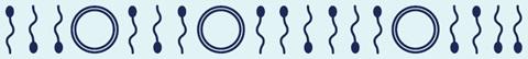 MMC maakt kwaliteit fertiliteitszorg transparant